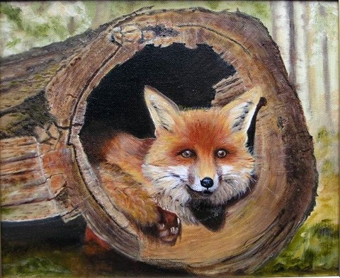 Young fox in a log